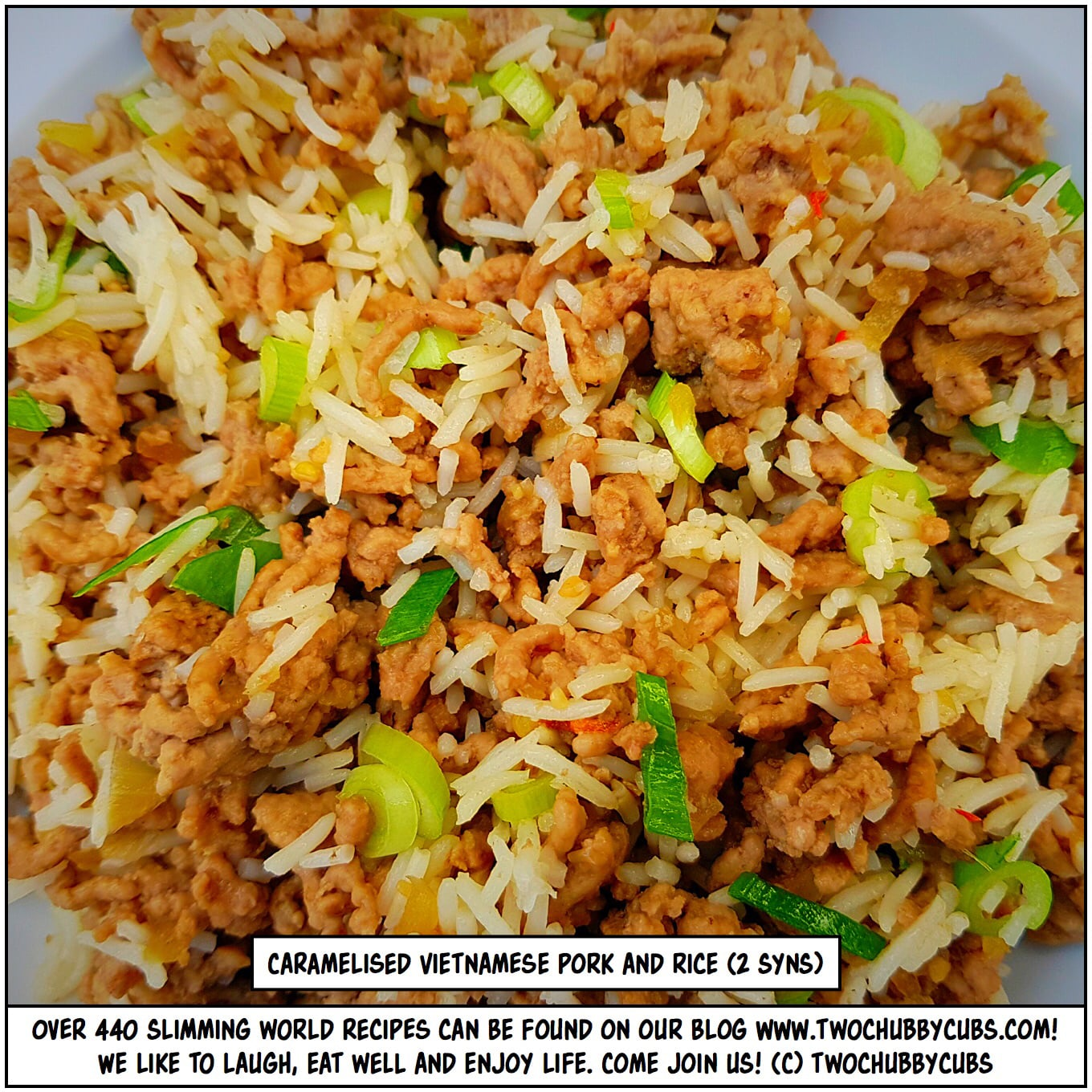 TWO SYN CARAMELISED PORK AND RICE | Slimming World | twochubbycubs